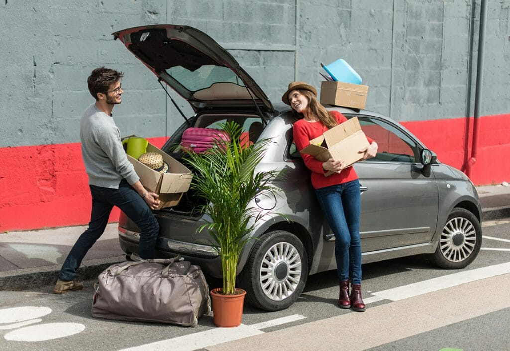 married couple unpacking a plant from their car